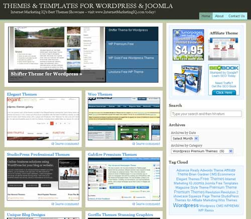 Our WordPress Theme Display Site